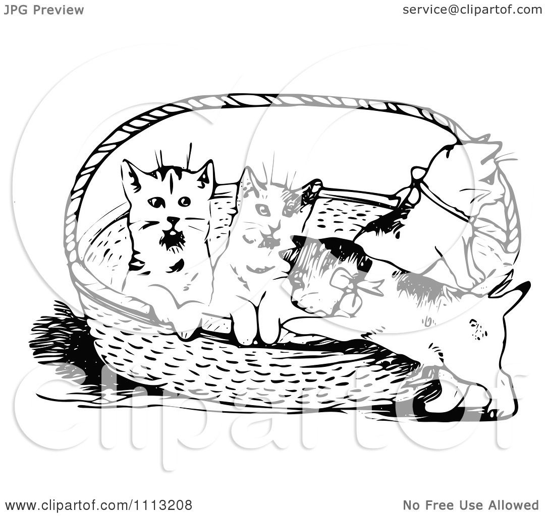 Clipart Vintage Black And White Kittens In A Basket