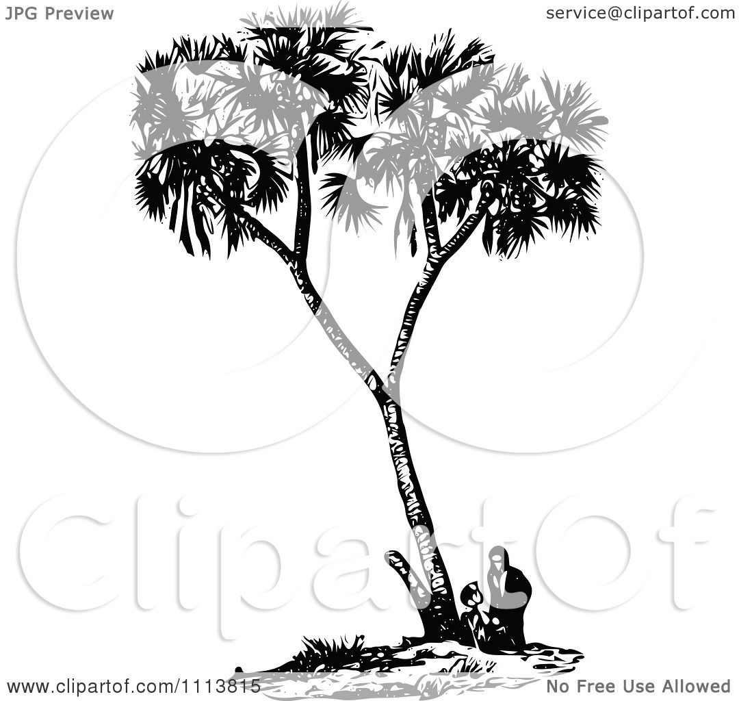 Clipart Vintage Black And White People Under A Date Palm