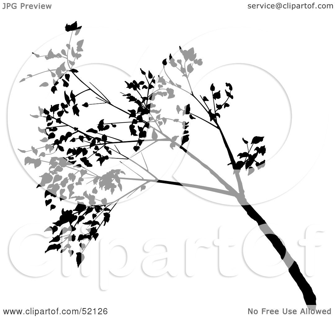 Royalty Free Rf Clipart Illustration Of A Black Tree