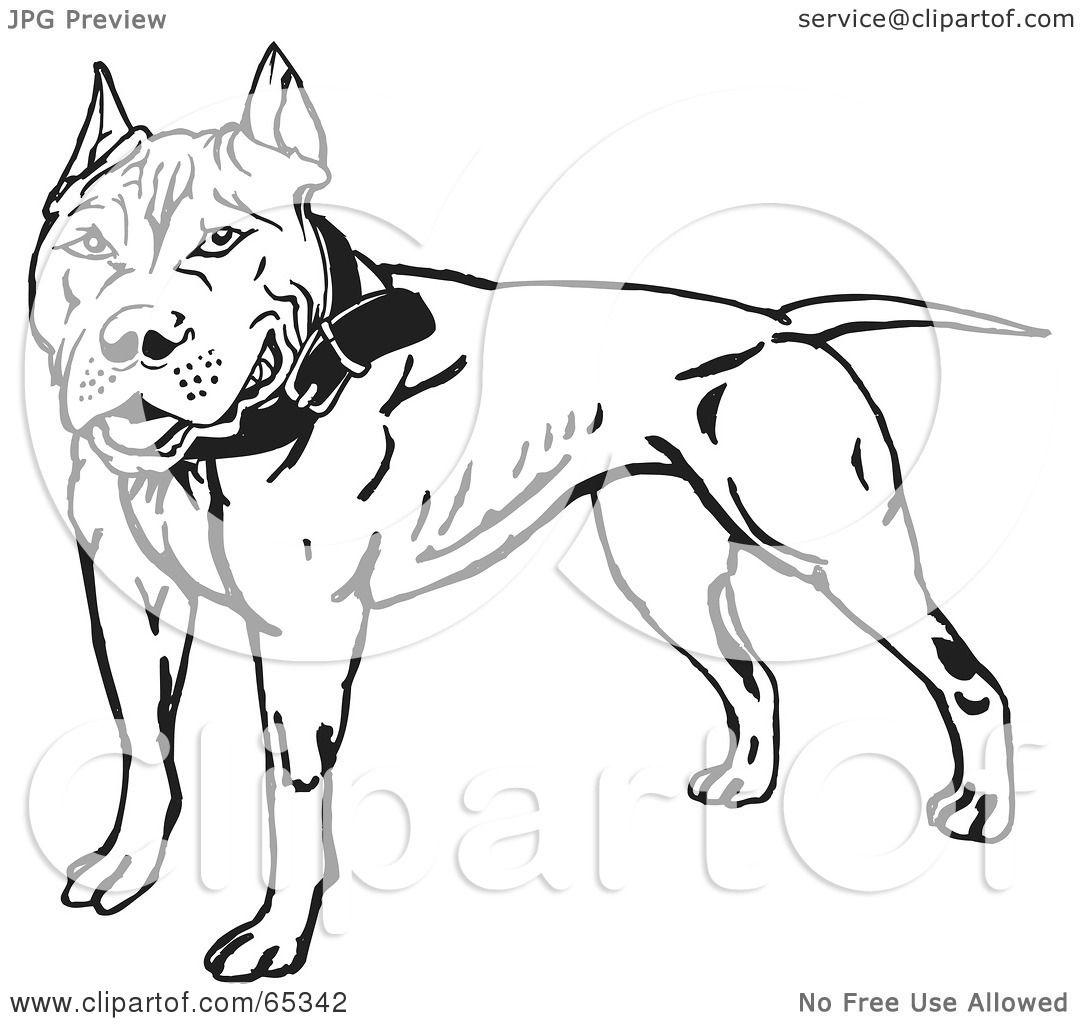 Large Dog Harness No Pull Dog