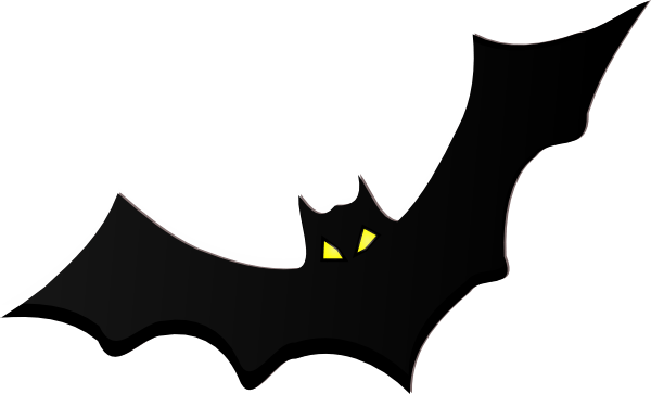 Image result for pics of bat