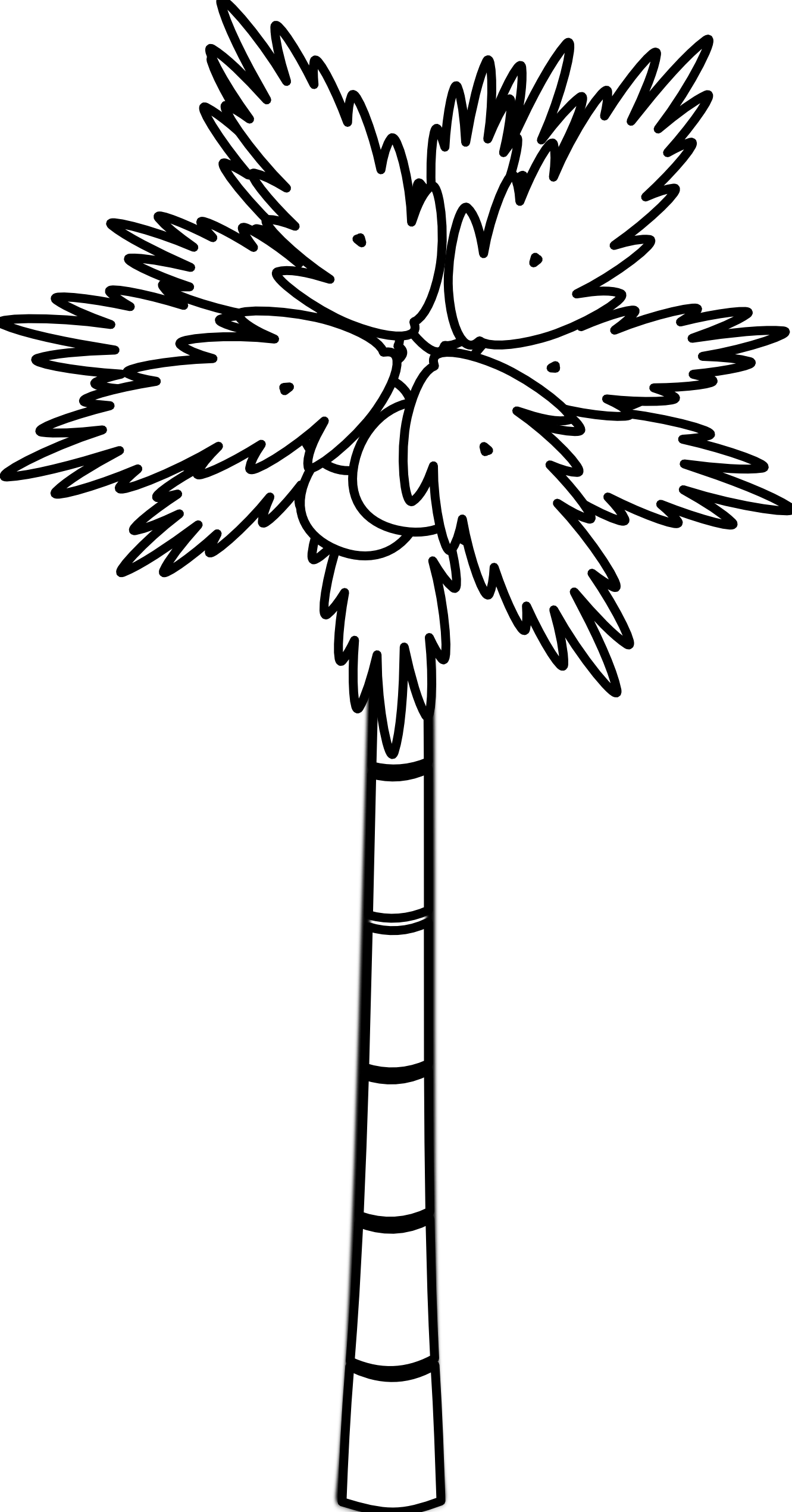 Palm Tree Clipart Black And White Clipart Panda