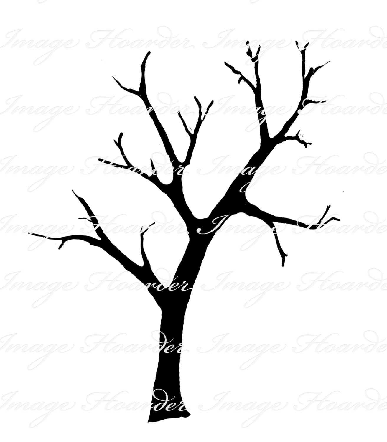 Clipart Tree With Branches Clipart Panda