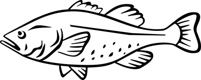 Printable Pictures Cod Fish
