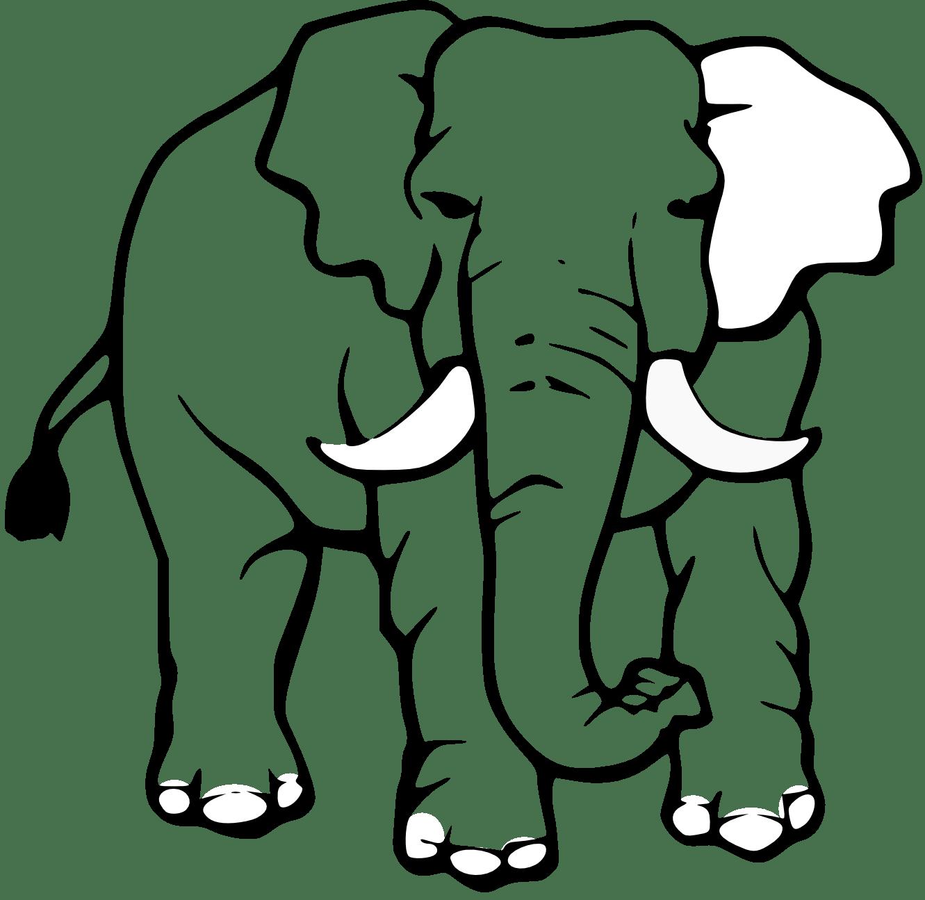 Indian Elephant Drawing Clipart Panda
