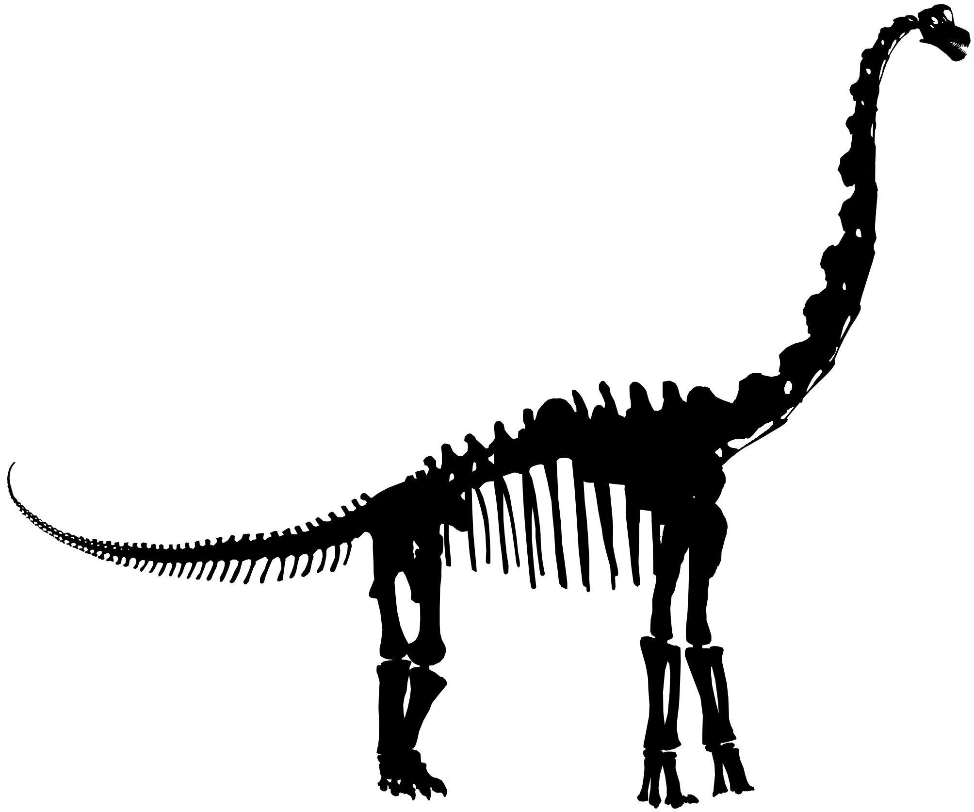 Dinosaur Skeleton Outline Clipart Panda