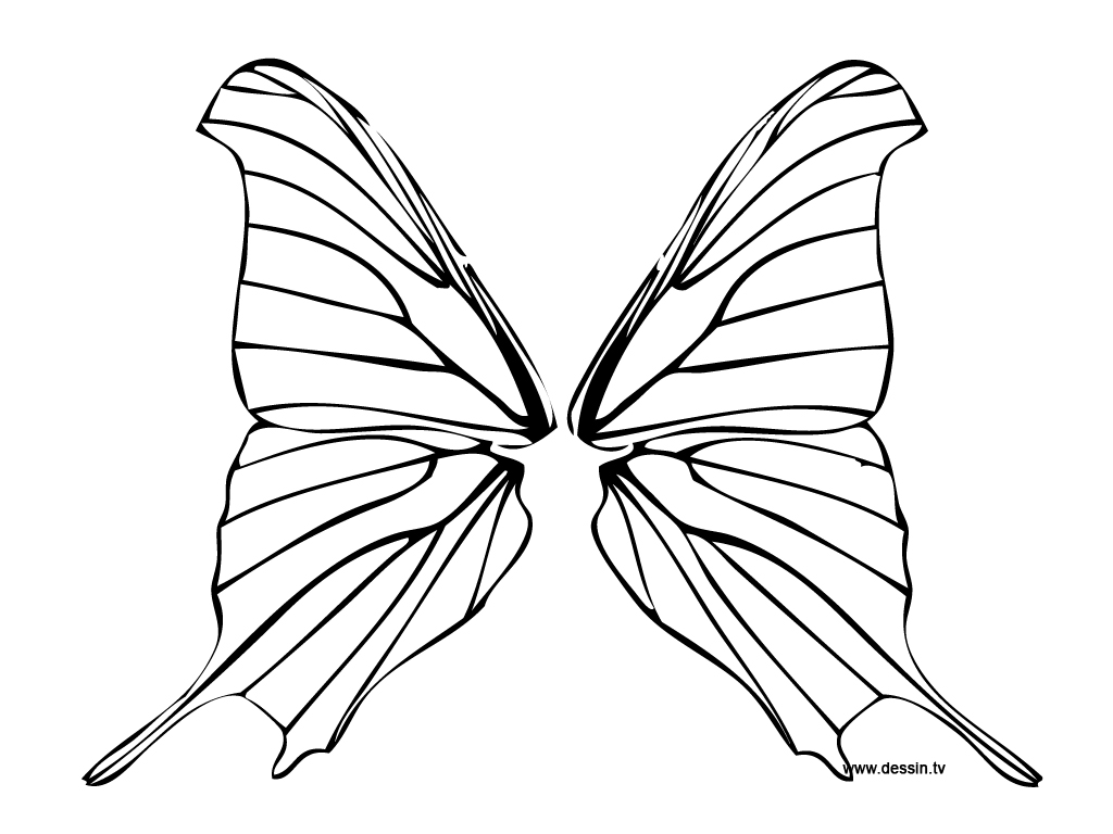 Fairy Wings Outline Clipart Panda