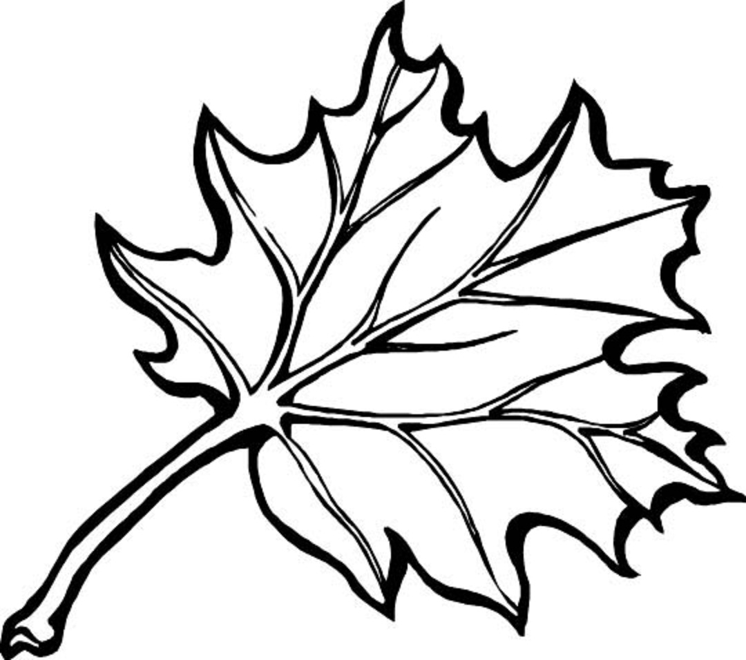 Fall Coloring Pages Clipart Panda