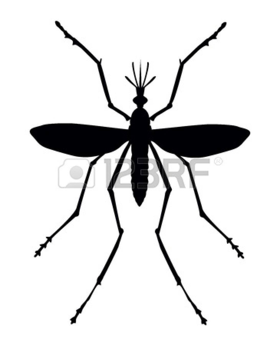 Dengue Mosquito Clipart