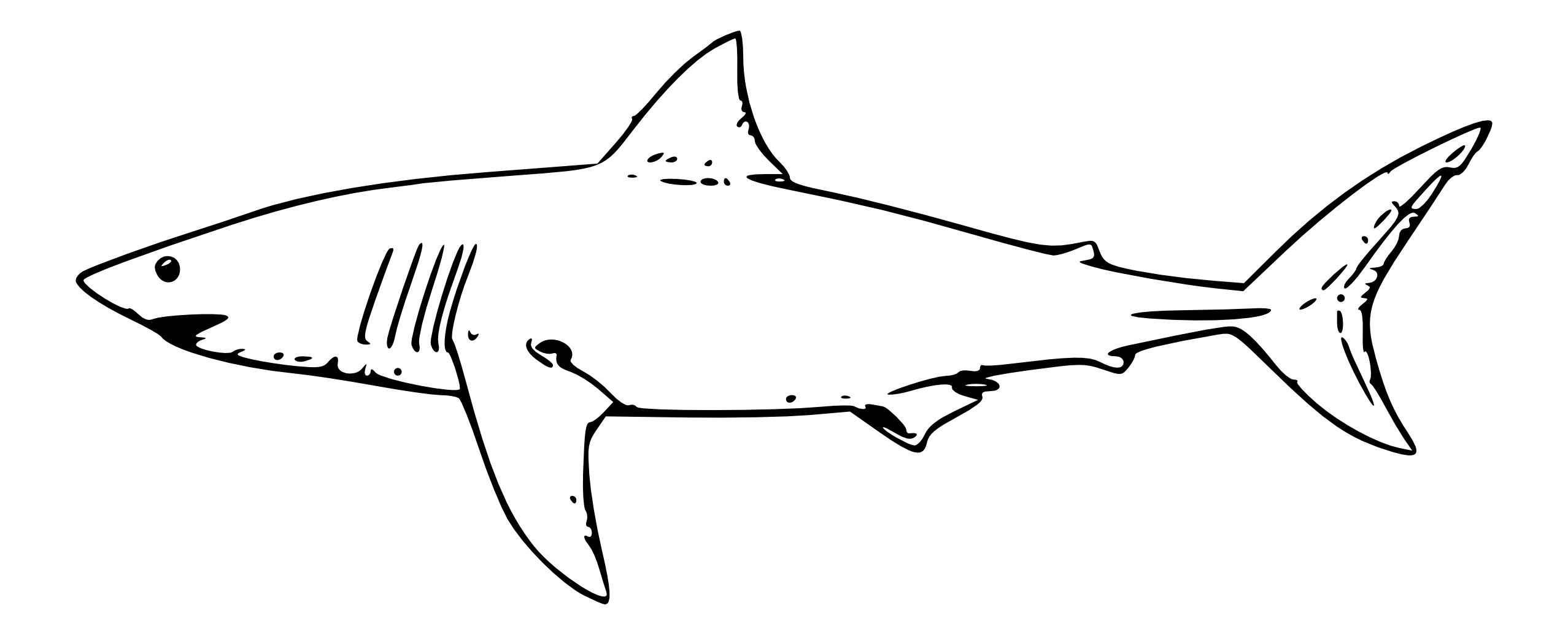 Great White Shark Clip Art Clipart Panda