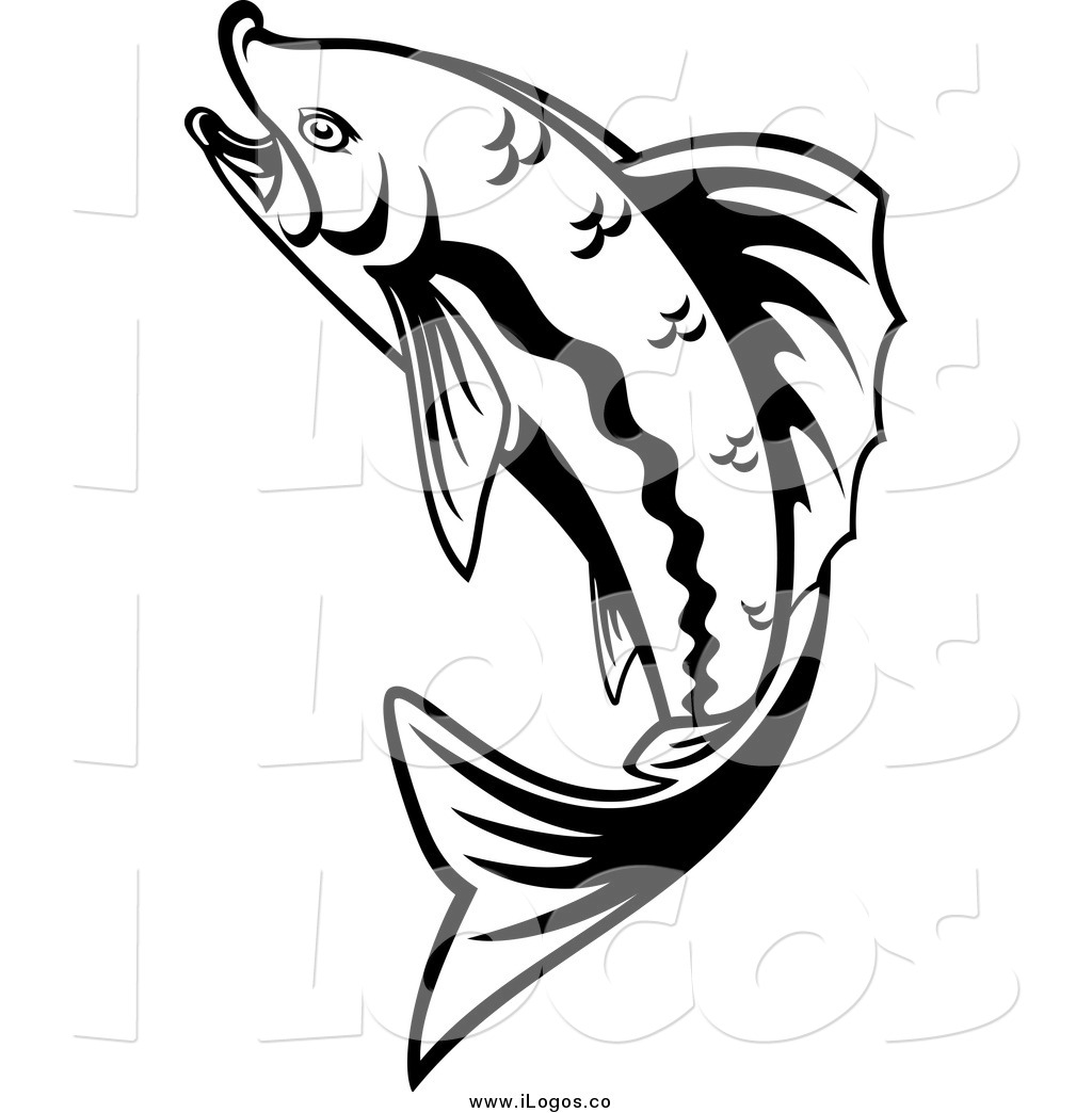 Black And White Pictures Of Jumping Rainbow Trout Fish