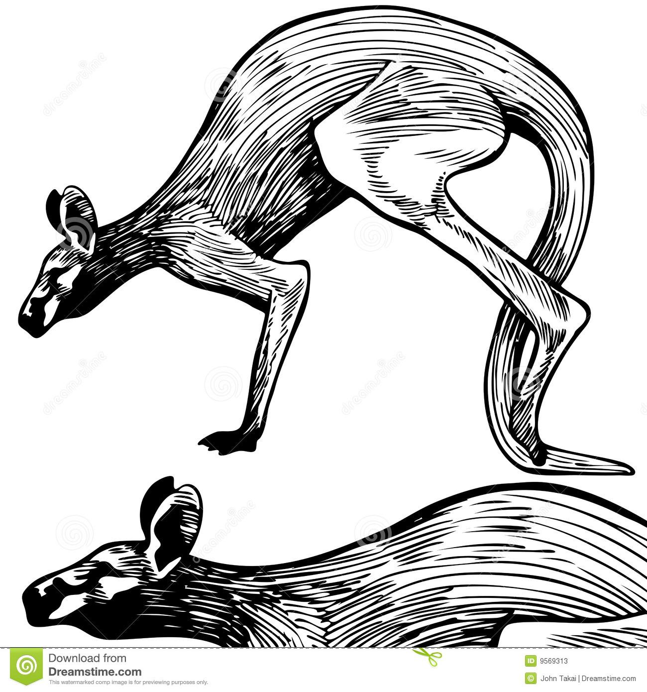 Kangaroo Clipart Black And White Clipart Panda