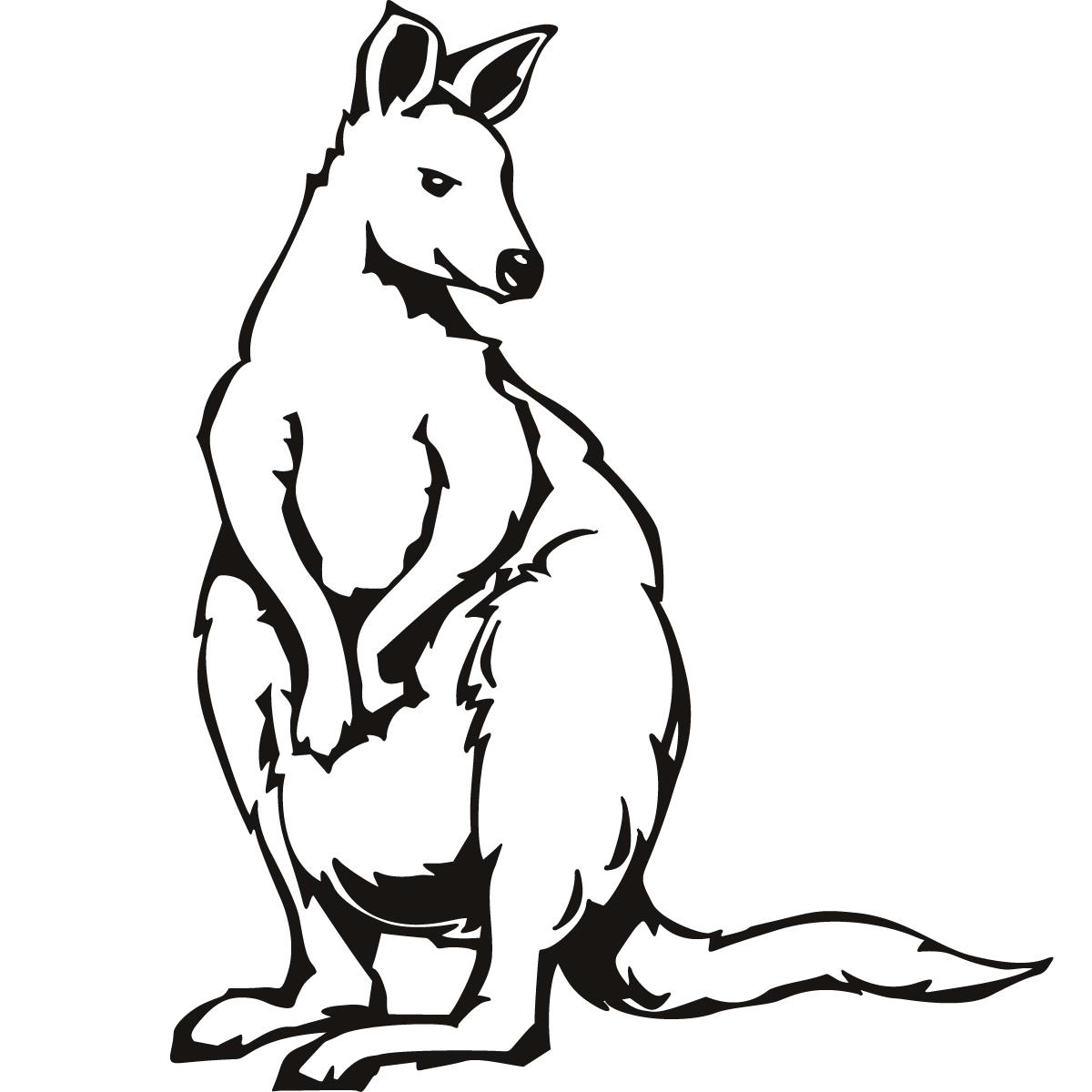 Kangaroo Coloring Pages Clipart Panda