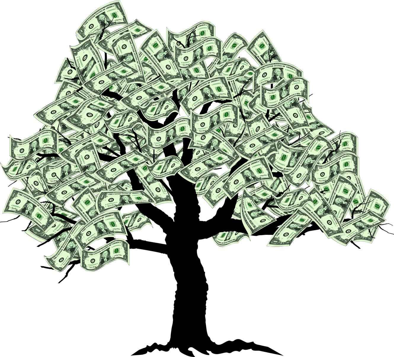 pinigų medis