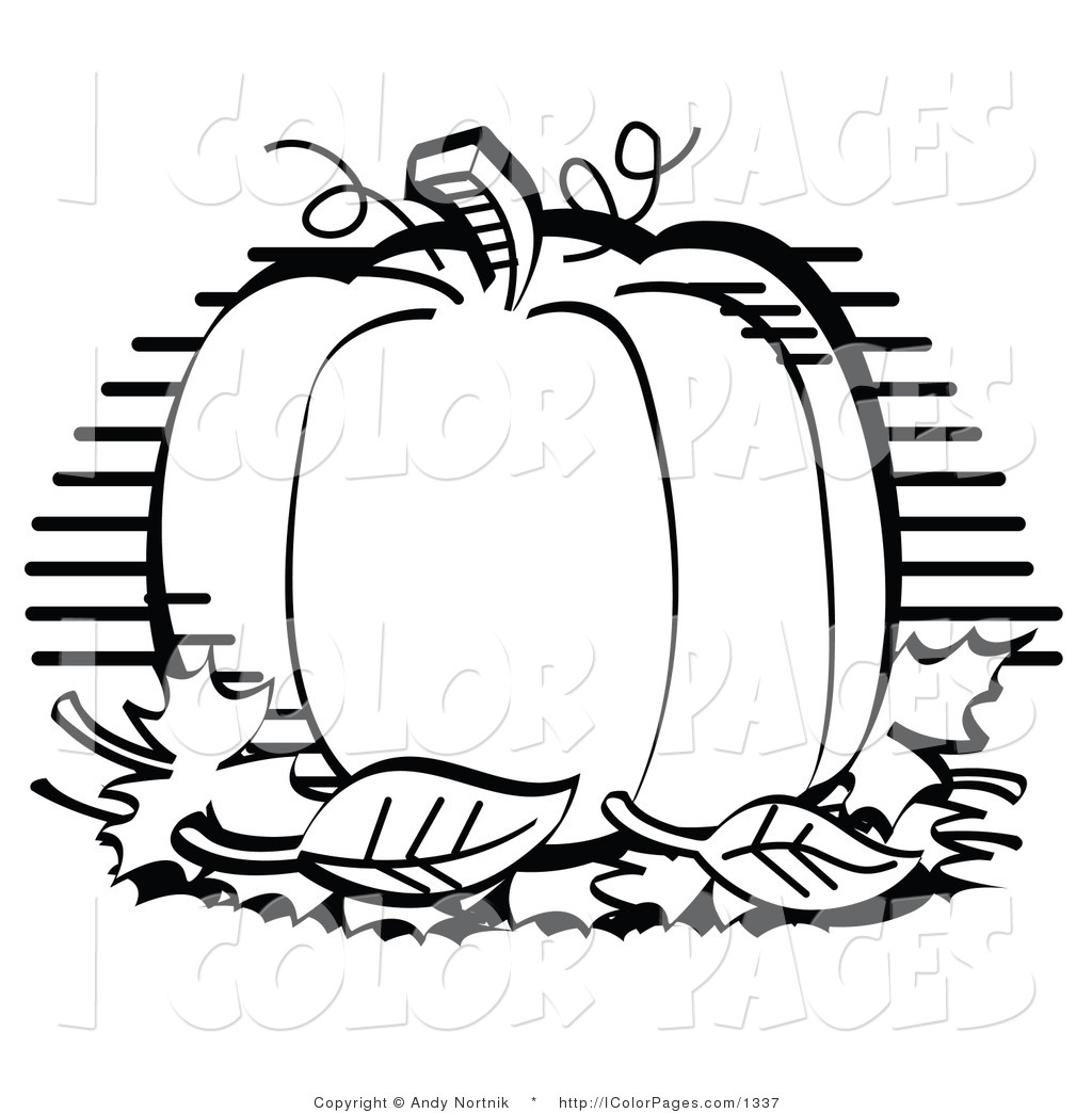 Pumpkin Outline Clipart Black And White