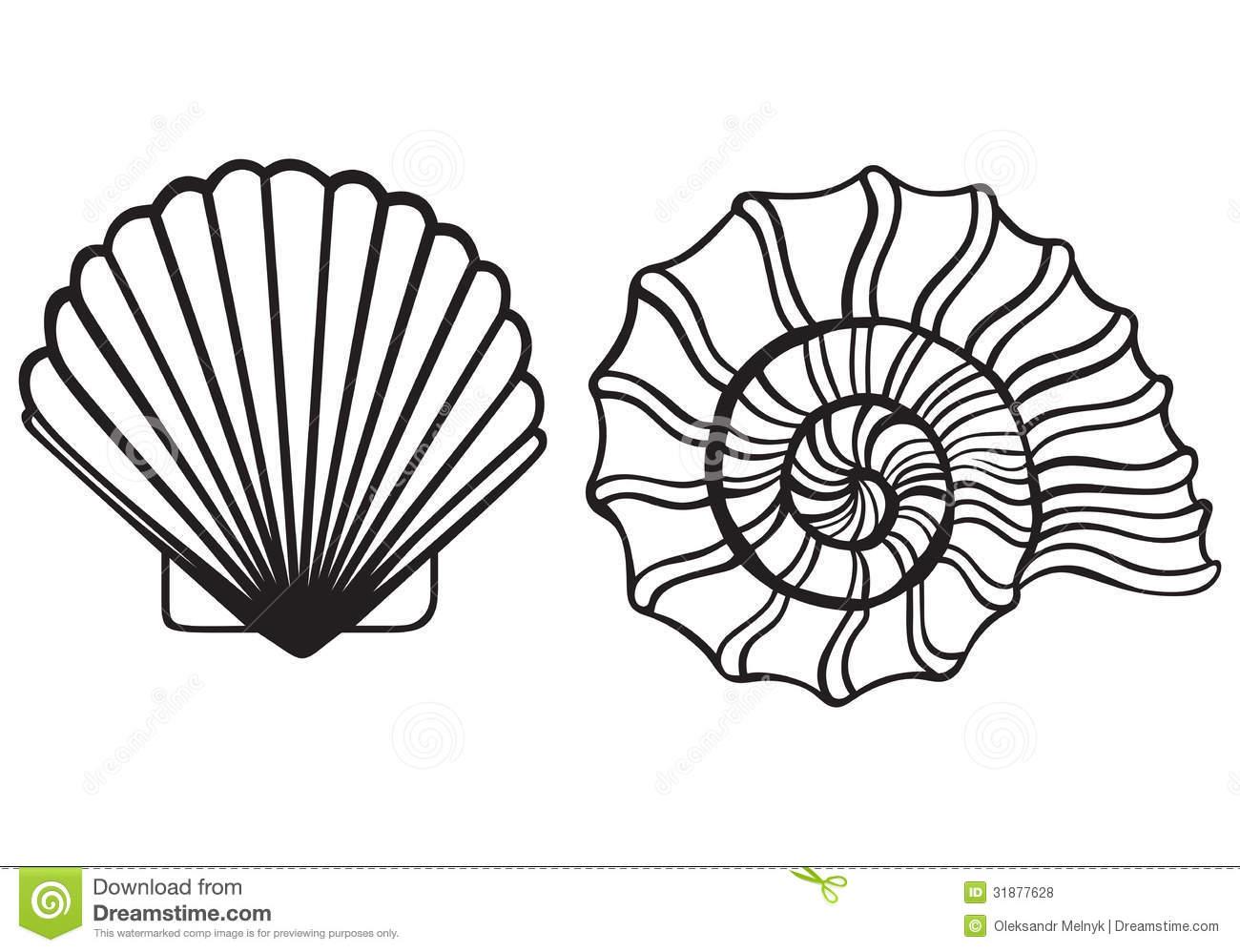 Seashell Clipart Black And White Clipart Panda