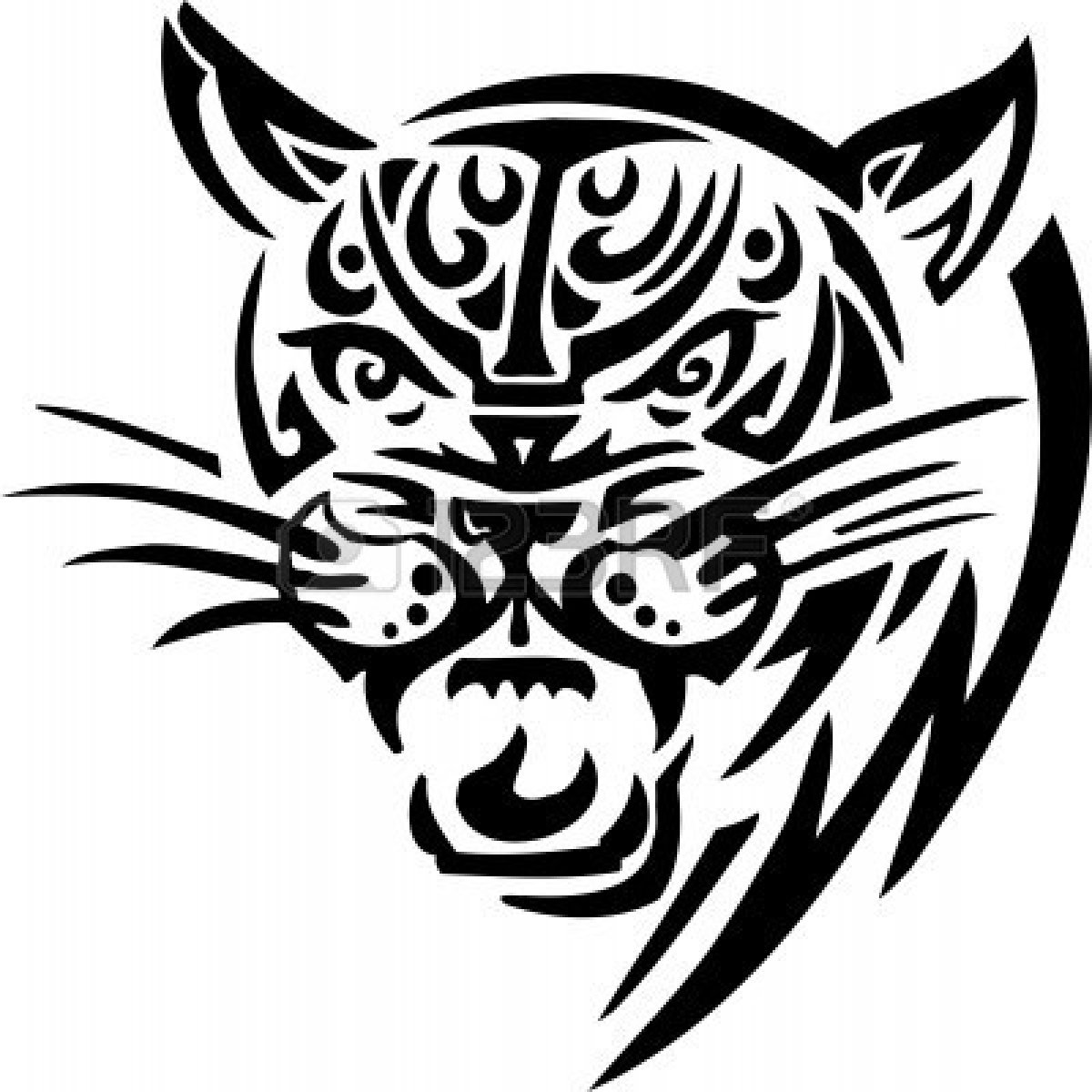 Light Tiger Animals