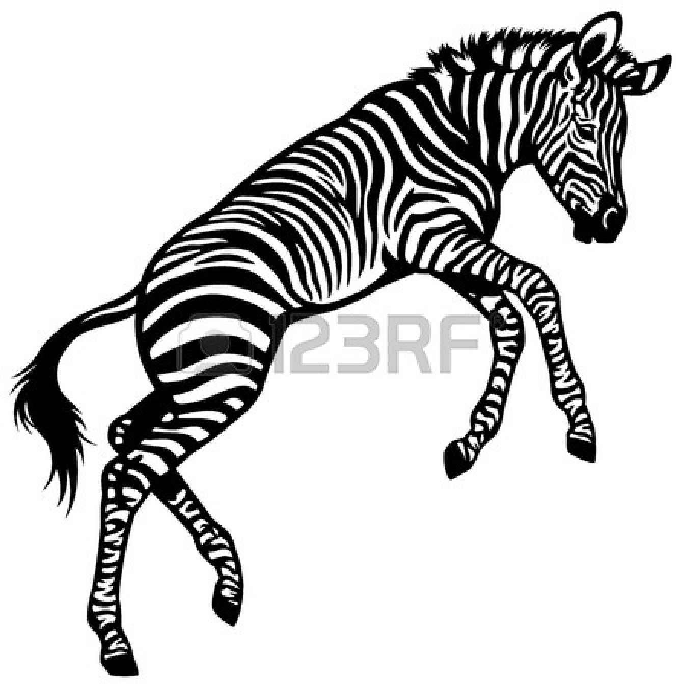Black And White Zebra Clip Art Pictures To Pin On