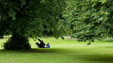 A family including a woman with a pushchair and two young children sit underneath a tall tree during the summer months
