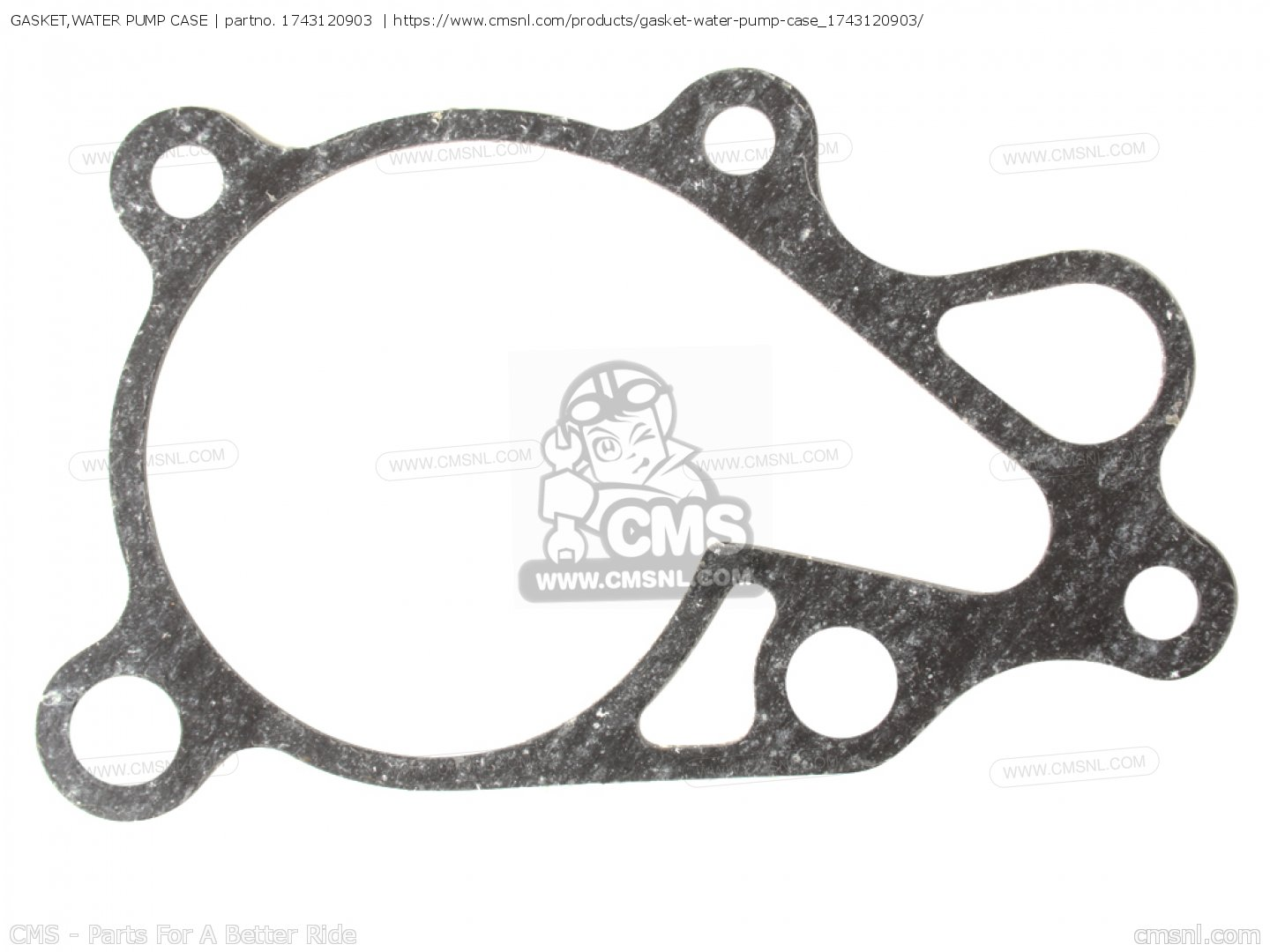 Gasket Water Pump Case Mca For Rm80h E