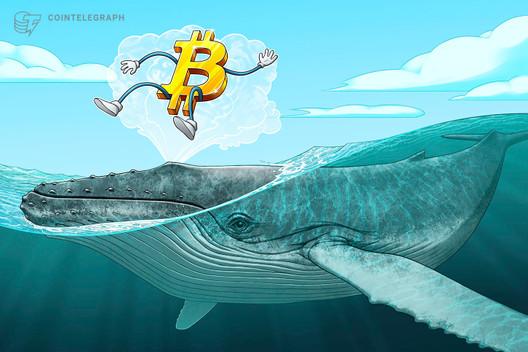 Balina alarmı: Tek işlemde 2 milyar dolarlık Bitcoin transfer edildi 14