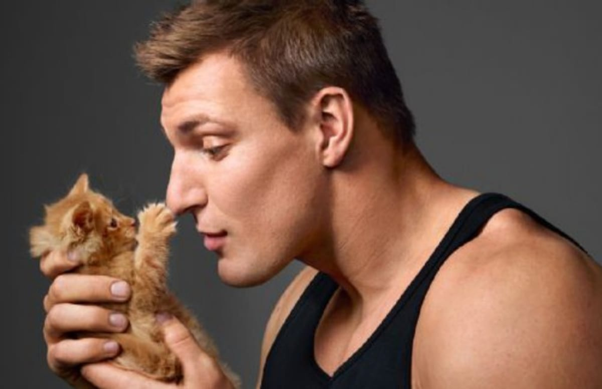 Rob Gronkowski Poses With Kittens Admits He Still Watches
