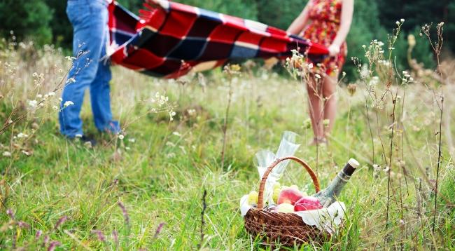 picnic-beacon-hill