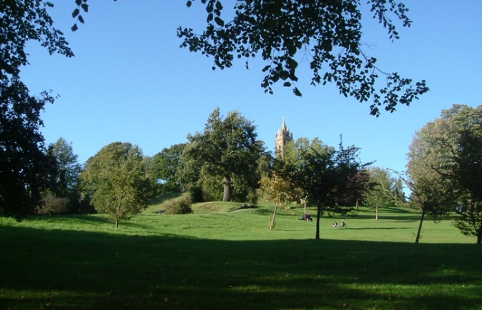brandon-hill