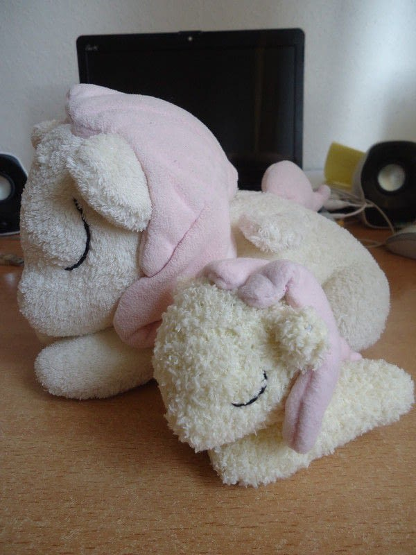 My Little Pony Sock Plush How To Make A Horse Pony