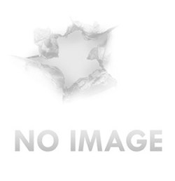Federal GM205M Premium Gold Medal Small Rifle Primers 1000 total packed 10  boxes of 100 | Red River Range