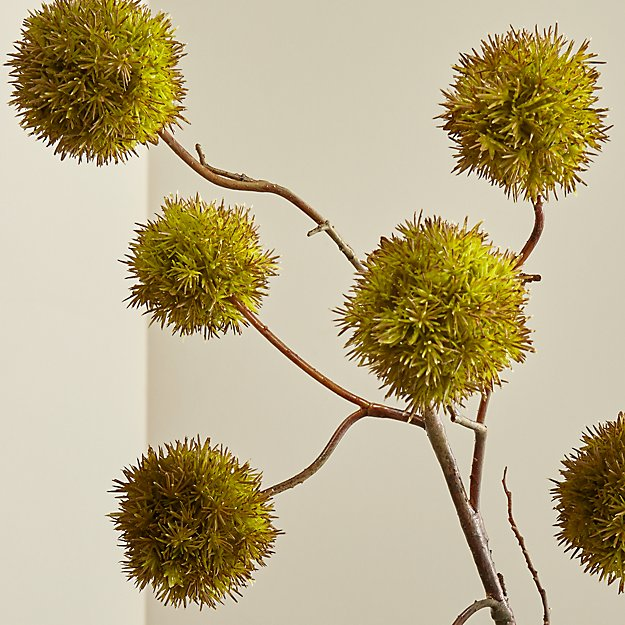 Faux Chestnut Branch Crate And Barrel