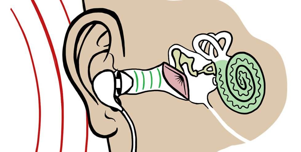 In-ear headphones diagram