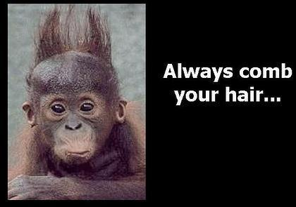 monkey always b your hair ments and graphics monkey always b your hair