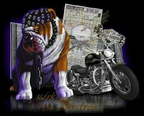 Dog And Motorcycle Facebook Comments And Graphics Dog And