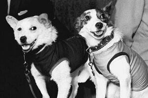 Soviet Space dogs honored on 50th anniversary of flight ...