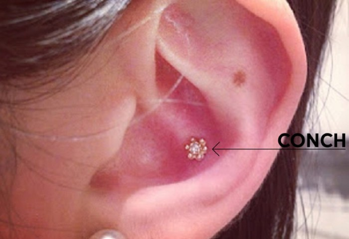 A Guide To Ear Piercing By New York Adorneds J Into The Gloss