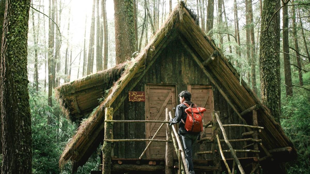 cabane dans les arbres avec jacuzzi