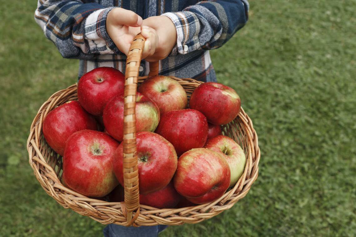 Un niño aprendiendo variables sosteniendo una canasta llena de manzanas.