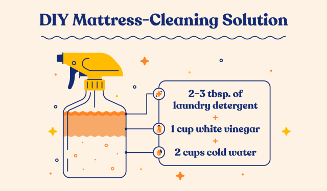 How to Get Pee Out of a Mattress: 17 Easy Steps  Casper Blog