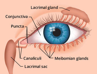 Eye Discharge  Causes, Types, Treatment