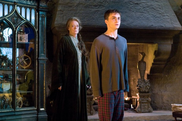 Why Newt Scamander and Harry Potter were different kinds of Chosen One 7