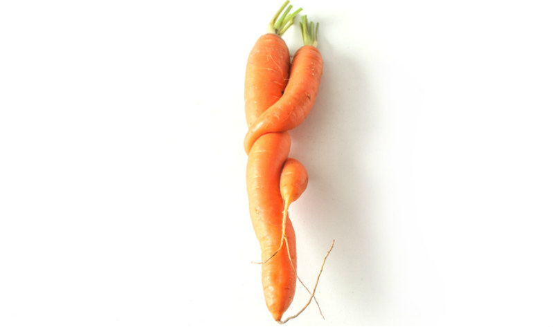 Carrot For Sperm Quality - Telugu Health News