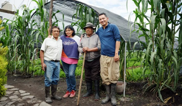 Keeping Mexico City's Agricultural Treasure Afloat in Xochimilco