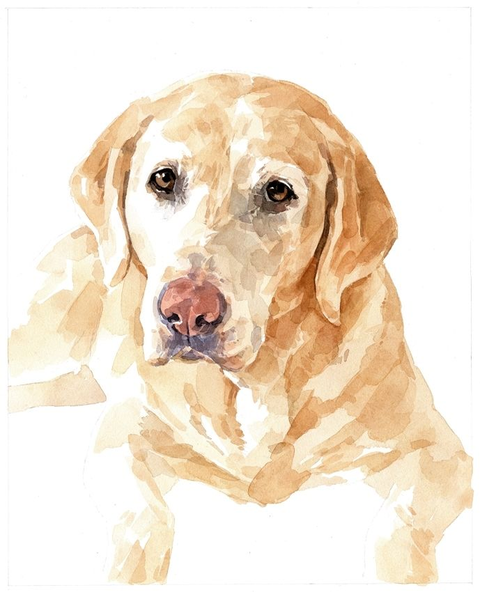 Hand Crafted Lab Dog Custom Portrait Watercolor Labrador