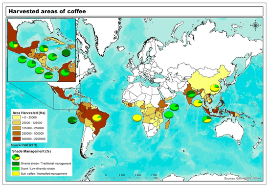 0711-coffeemap.png