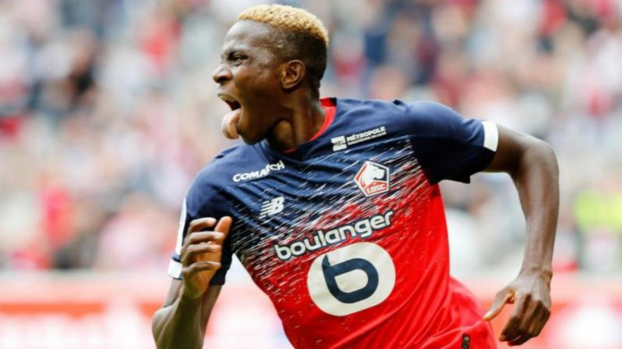 Image result for Victor Osimhen goal stats