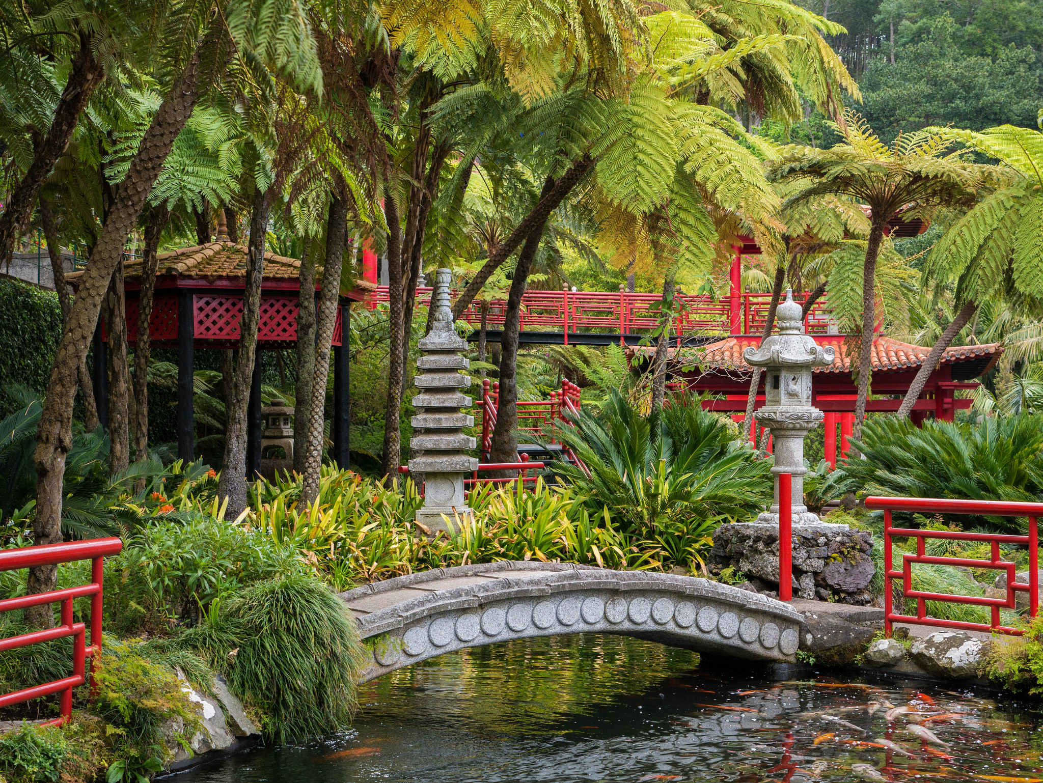 24+ Tropical Garden Designs, Decorating Ideas | Design ... on Tropical Backyard Ideas  id=75483