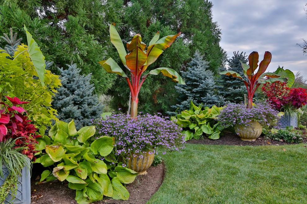 24+ Tropical Garden Designs, Decorating Ideas | Design ... on Tropical Backyard Landscaping  id=21537