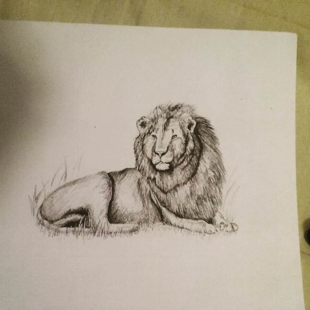 Latest Drawing Room Design