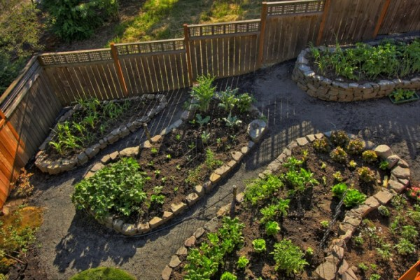 rock raised garden bed ideas 20+ Raised Bed Garden Ideas   Design Trends - Premium PSD
